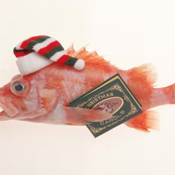 Celebra la Navidad en mar deCádiz